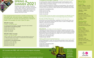 Spring and Summer Courses 2021